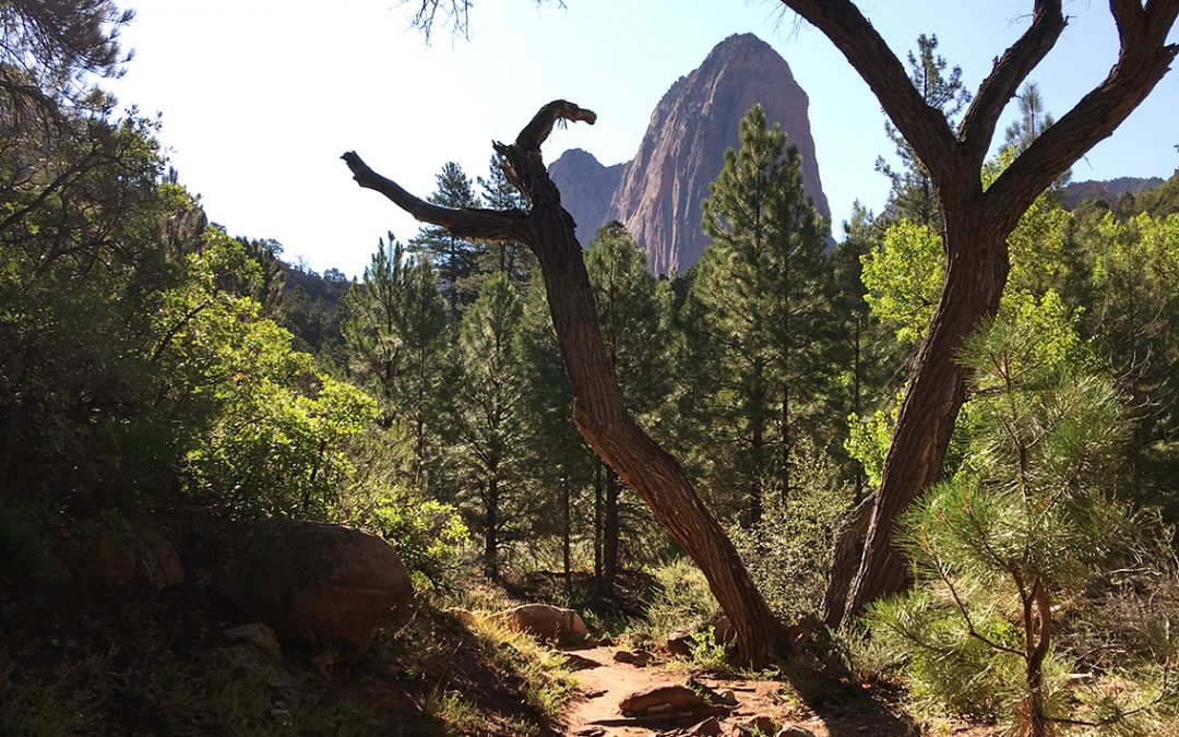 The Other Zion: Kolob Canyon